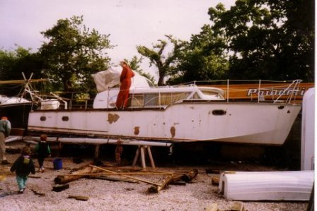 Monaco - Louly first day at Totnes yard 1993